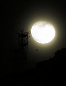 Moon rising behind tower.